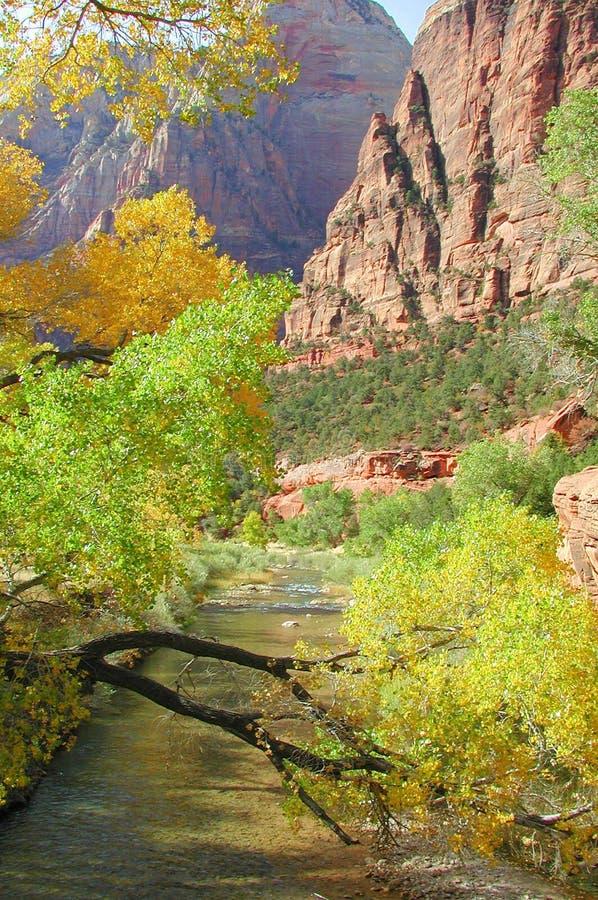 Download 颜色秋天zion 库存照片. 图片 包括有 zion, 国家, 秋天, 颜色, 公园, 红色, 橙色, 峡谷 - 193526