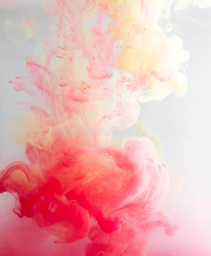 颜色花梢烟 库存照片