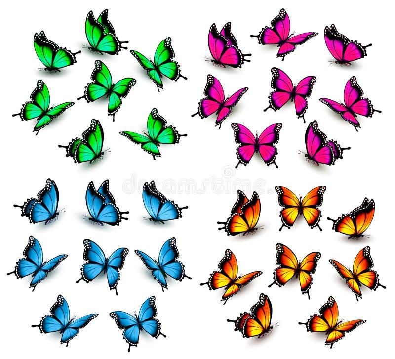颜色蝴蝶的汇集 库存例证