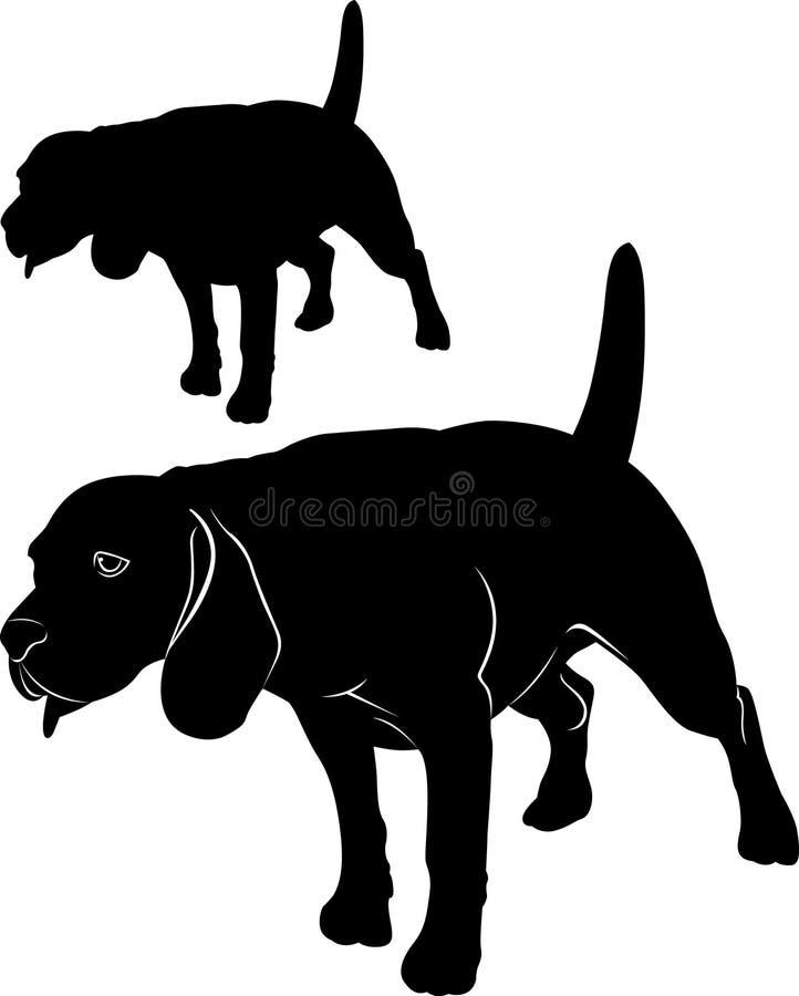 额嘴 狗小猎犬 导航一个狗小猎犬的图象在白色背景的 向量例证