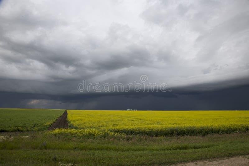 暴风云萨斯喀彻温省 图库摄影