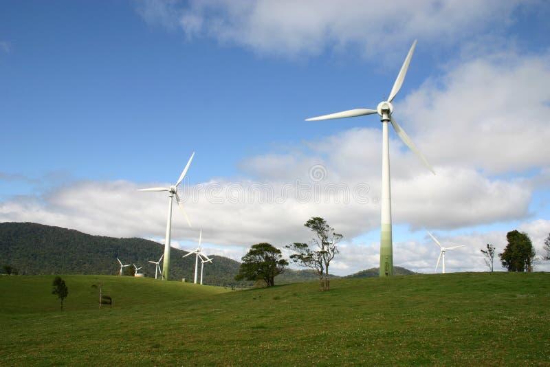 风力场北澳洲 库存图片