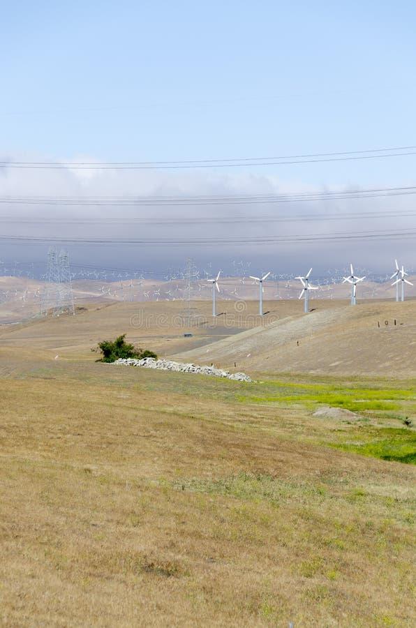 风力场在利弗摩尔金黄小山在加利福尼亚 免版税库存照片