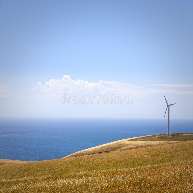 风力场海星小山南澳大利亚 免版税图库摄影