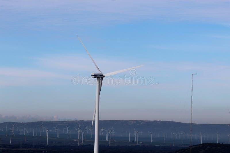风力场Fascinas,安大路西亚,西班牙 库存照片