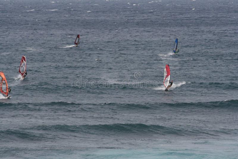 风帆冲浪在毛伊 库存照片