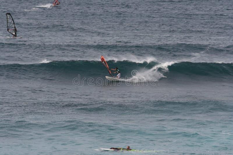 风帆冲浪在毛伊 免版税库存照片
