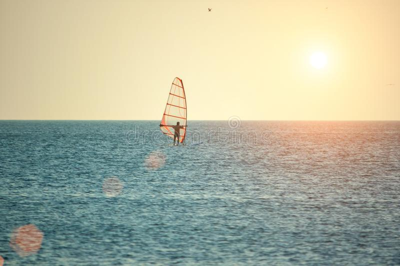 风帆冲浪海表面上在日落在阳光下,室外活动的概念 图库摄影