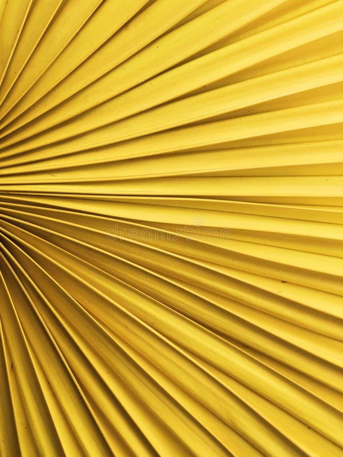 风扇黄色 库存图片