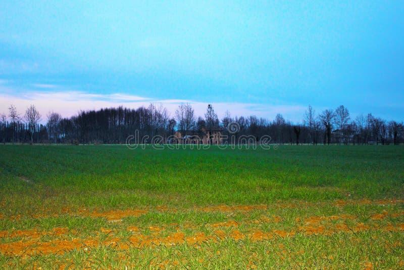 风景、新近地培养的领域有背景农场和一美丽的天空蔚蓝 免版税库存照片