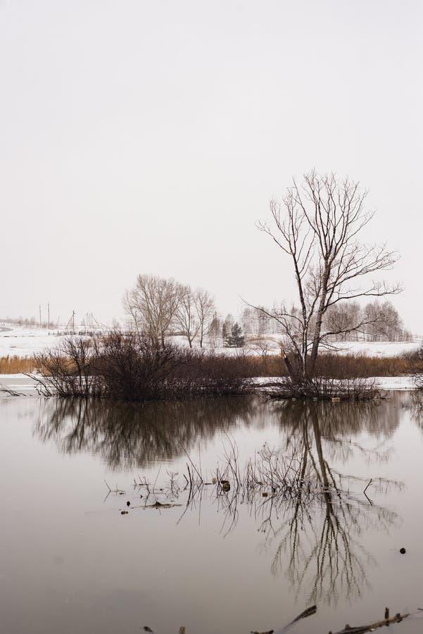 风景优美,河水平平静,春江 免版税图库摄影