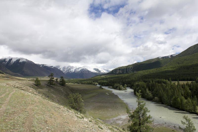 风景俄罗斯阿尔泰 在背景山 一个美好的秋天风景,山湖的看法 免版税库存图片