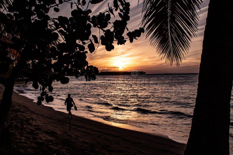 风景加勒比日落在Las Terrenas,多米尼加共和国 免版税图库摄影