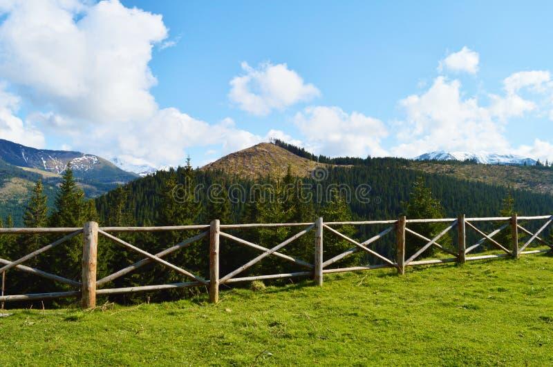风景和篱芭在Maramures,罗马尼亚 免版税库存图片