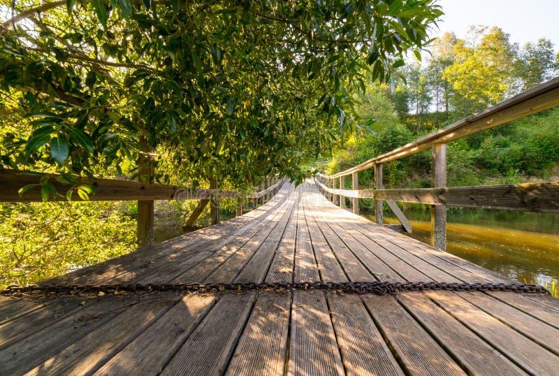 风景和美丽的旅游业足迹在森林临近河 免版税图库摄影