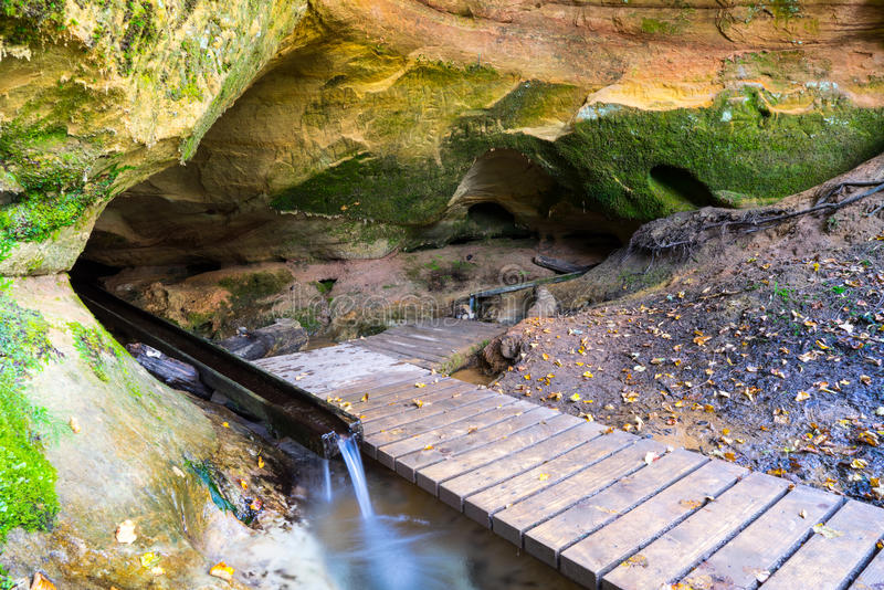 风景和美丽的旅游业足迹在森林临近河 免版税库存图片