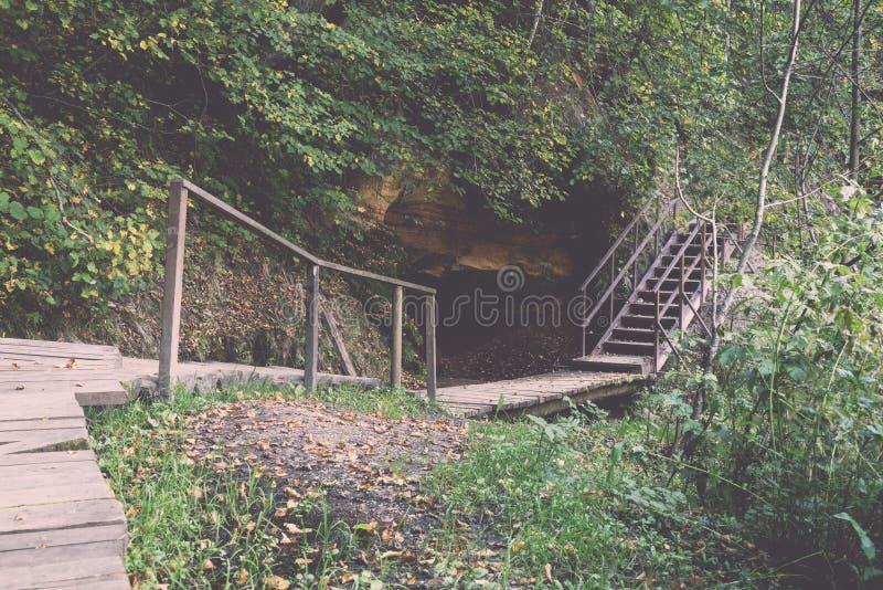 风景和美丽的旅游业足迹在森林临近河 库存照片