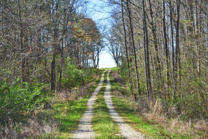风景国家偏僻地区土和石渣路 免版税库存图片