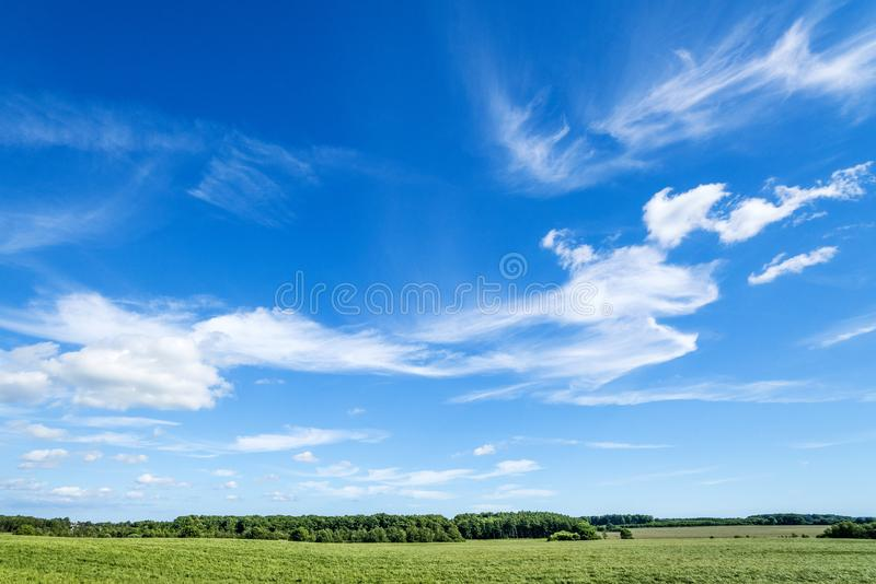 风景在一个农村乡下环境里 库存图片
