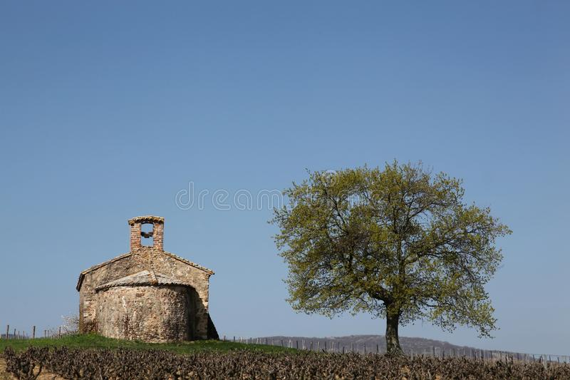 风景在博若莱红葡萄酒 库存照片