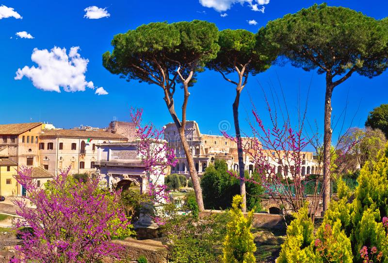 风景在古罗马广场和罗马斗兽场的废墟的春天全景在罗马 图库摄影
