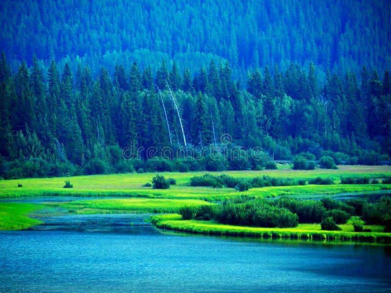 风景在幽鹤国家公园 图库摄影