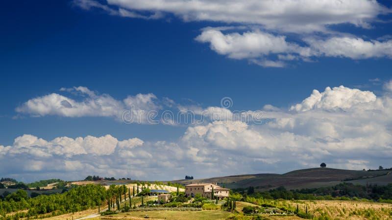 风景在有葡萄园和农田的托斯卡纳 库存照片