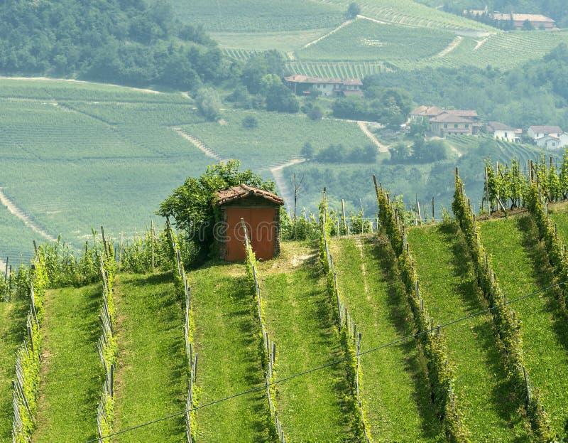 Download 风景在Langhe (山麓) 库存图片. 图片 包括有 绿色, 本质, 结构树, 意大利语, 天空, 没人 - 59103747