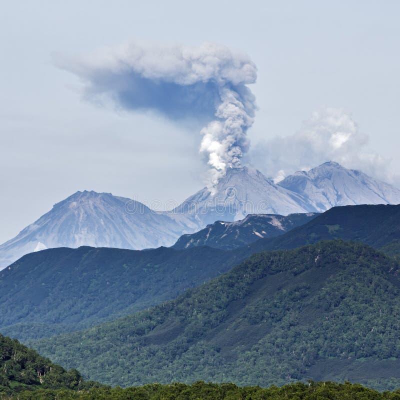 风景夏天堪察加山风景:爆发活火山 库存图片