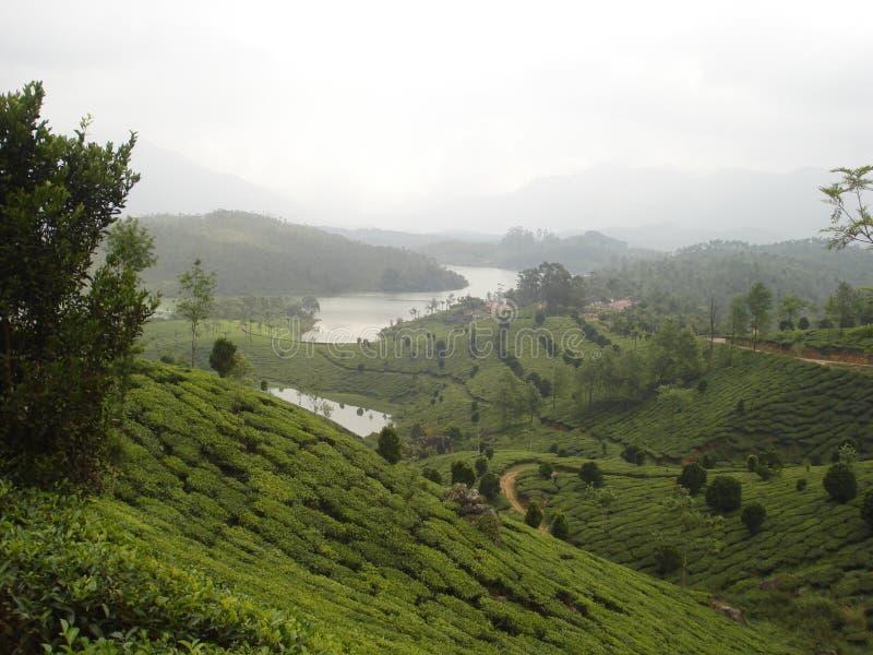 风景小山的河 库存图片