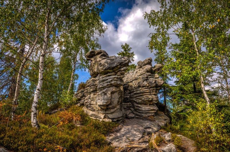 风景岩层在秋天在石迷宫skaly Bledne附近的桦树森林里在Szczeliniec Wielki 图库摄影