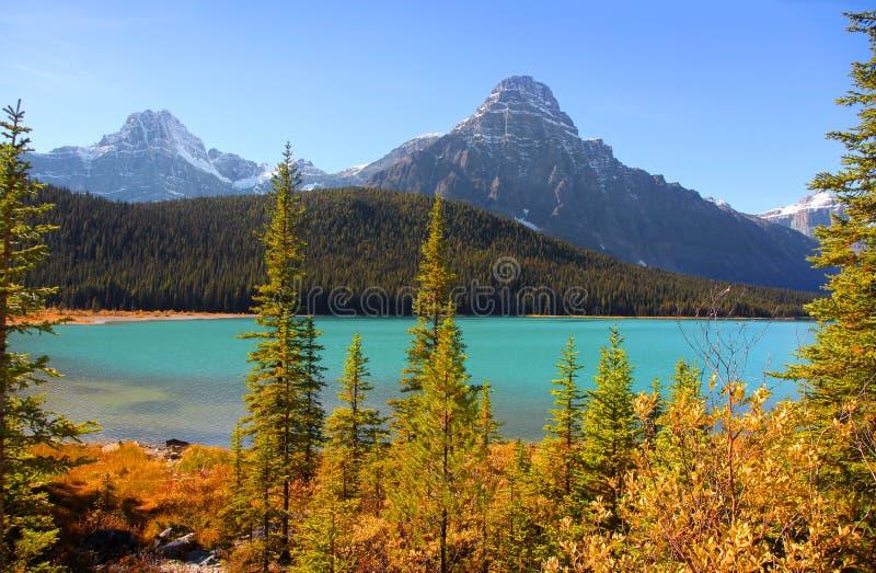 风景弓湖风景在班夫国家公园 库存照片