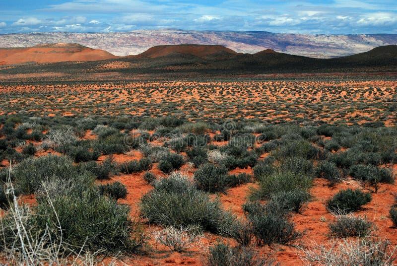 风景沙漠的土坎 图库摄影