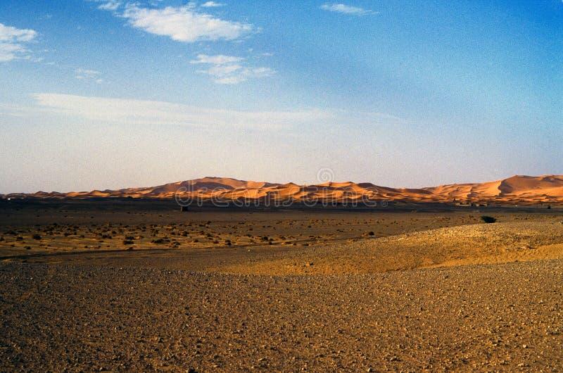 风景沙漠的横向 免版税库存图片