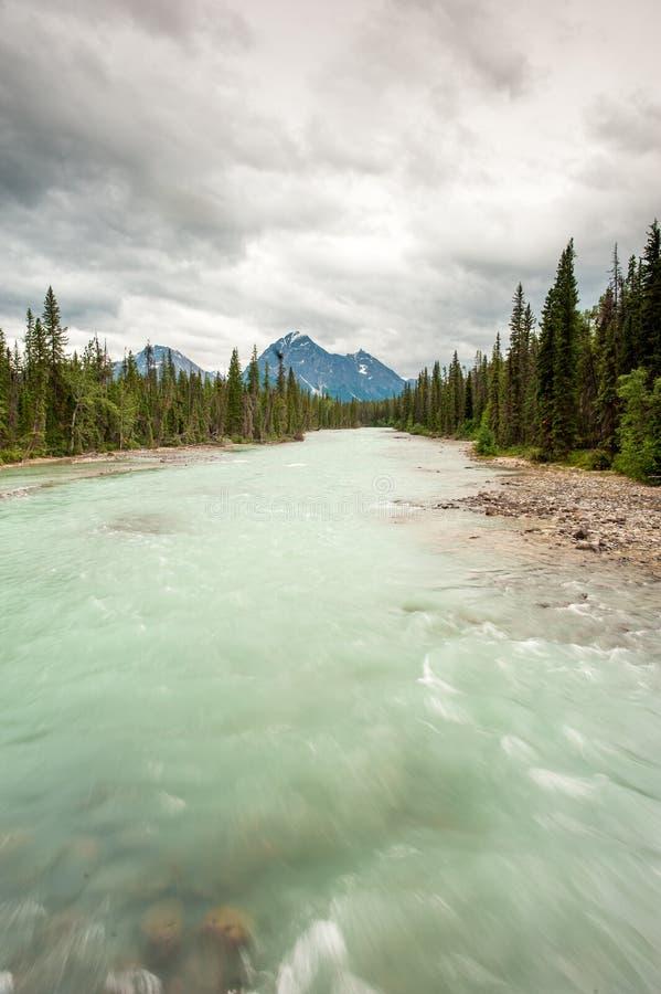 风景河在贾斯珀国家公园 库存图片