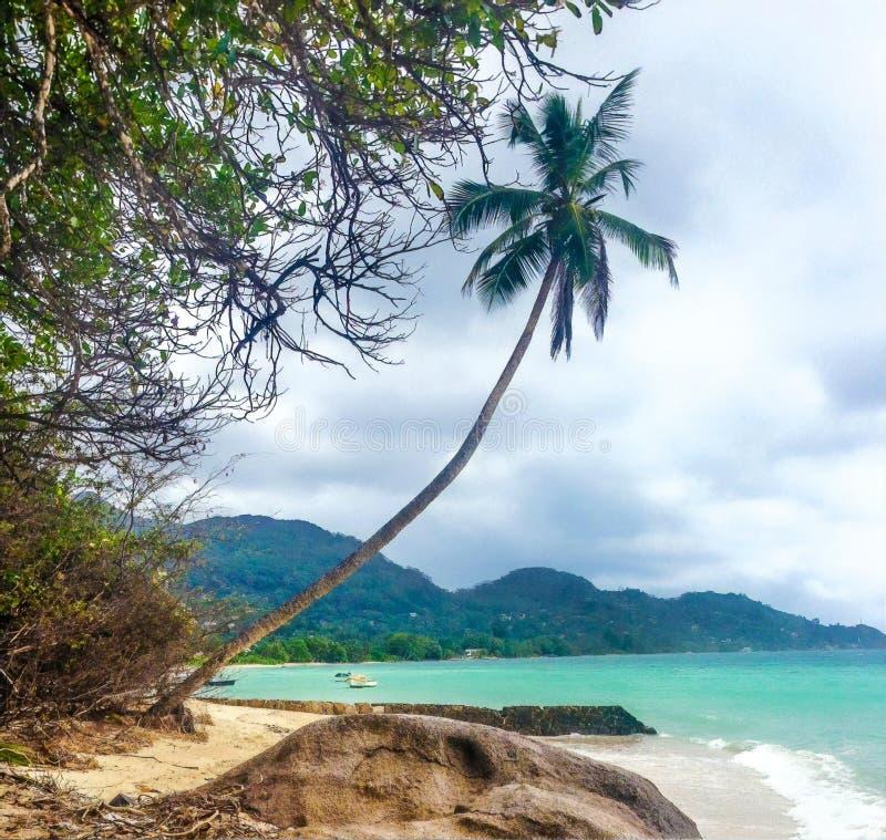 风景海滩视图,马埃海岛,塞舌尔 免版税库存图片