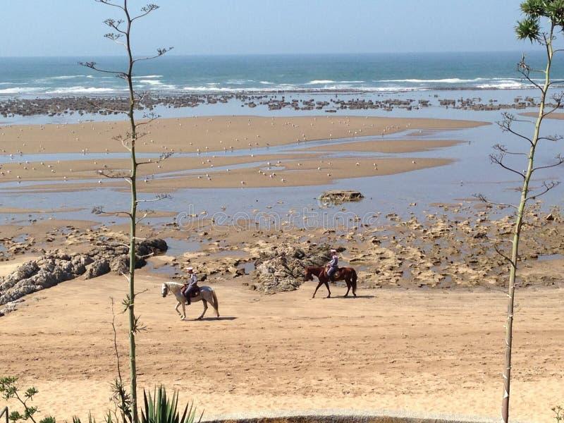 风景海滩 免版税图库摄影