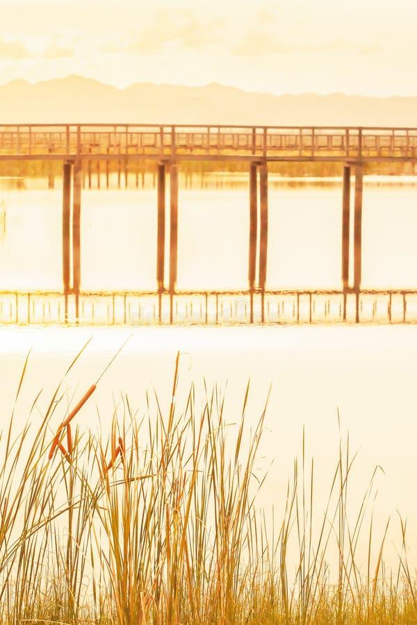 风景热带湖视图在日落,抽象木桥在湖反射了,用茅草盖生长在湖边 免版税库存照片