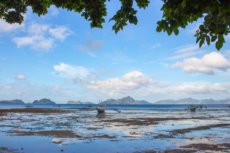 风景热带风景 在海滨的低潮 全景海景在海滩树下 菲律宾,海岛巴拉旺岛,El Nido海滩 库存照片
