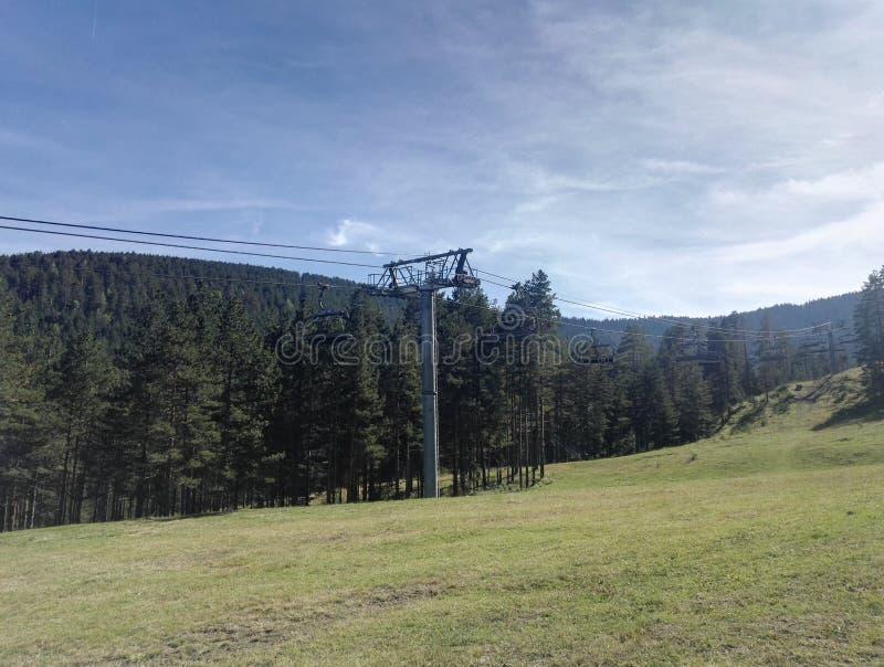 风景照片,电车,许多绿色树,浅绿色的领域 库存图片