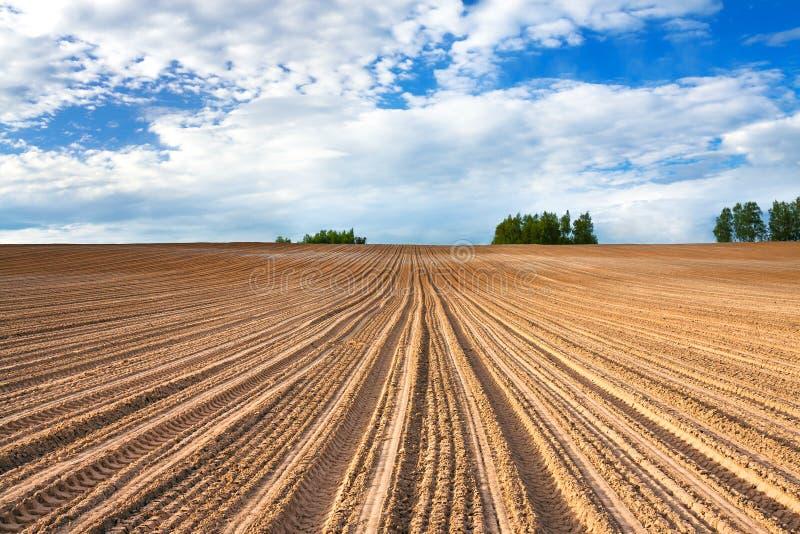 风景的春天与被耕的领域的 免版税库存照片