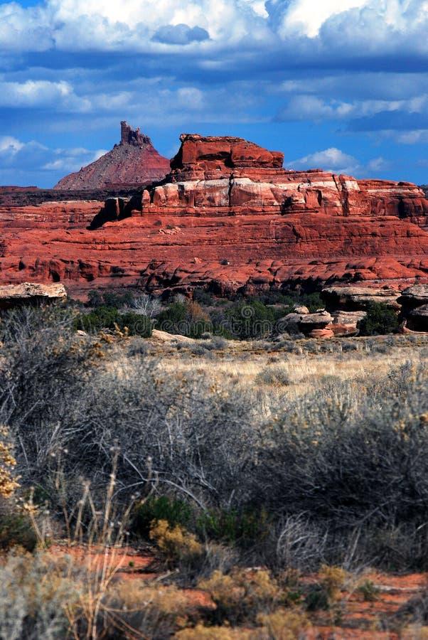 风景的沙漠 免版税库存图片