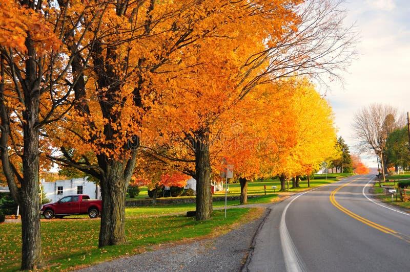风景秋天的路 图库摄影