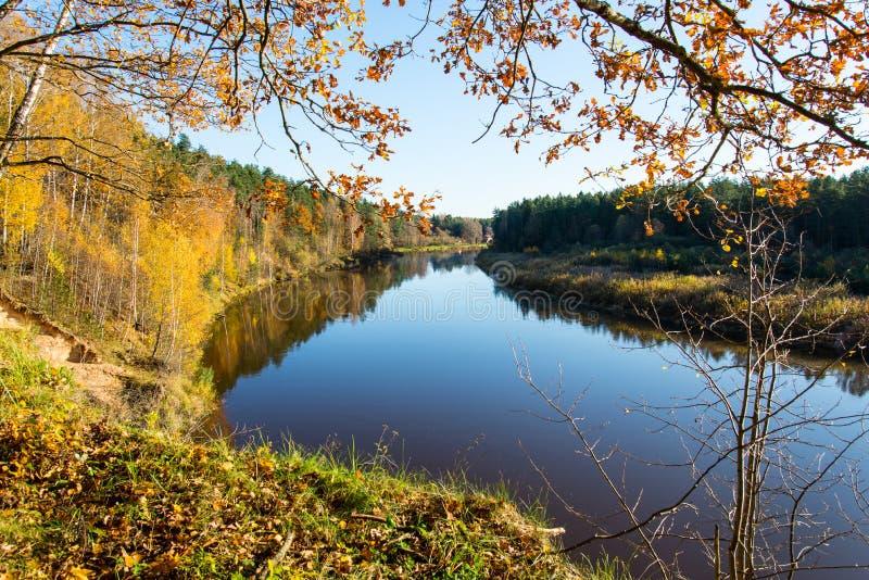 风景秋天色的河在国家 免版税库存照片