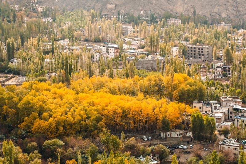 风景秋天视图在莱赫拉达克区,印度的酷寒北风零件 免版税库存照片