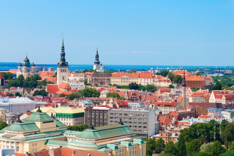 风景老镇的夏天空中全景在塔林,爱沙尼亚 库存照片