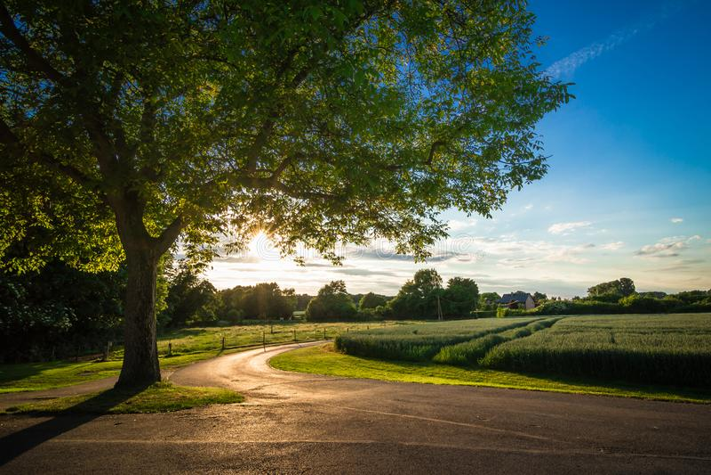 风景自然德国日落16 库存图片