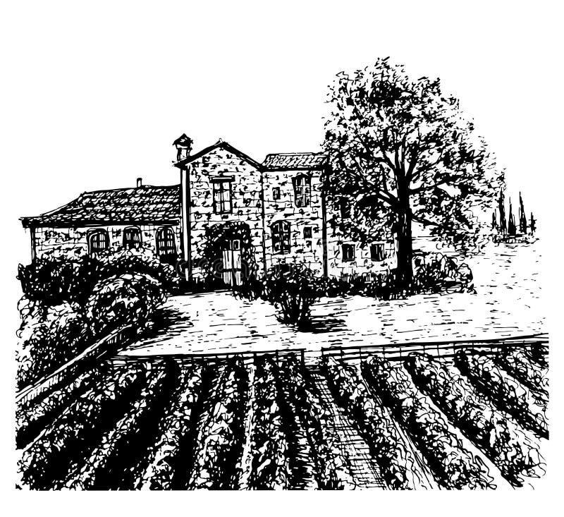 风景葡萄园手拉的墨水剪影例证 皇族释放例证