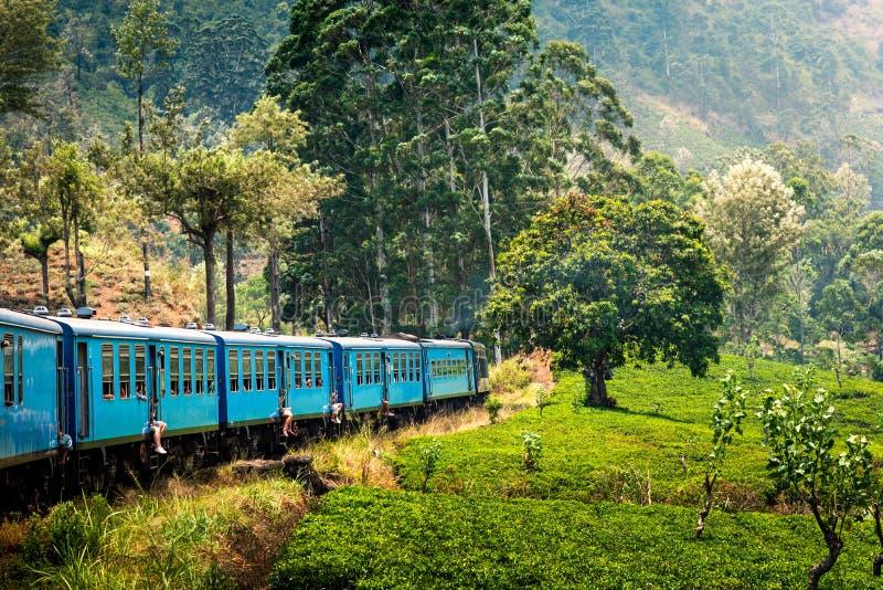 风景蓝色火车通过斯里兰卡高地 免版税库存照片
