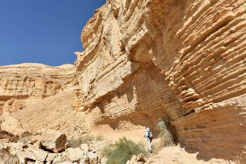 风景远足在犹太沙漠山 库存图片